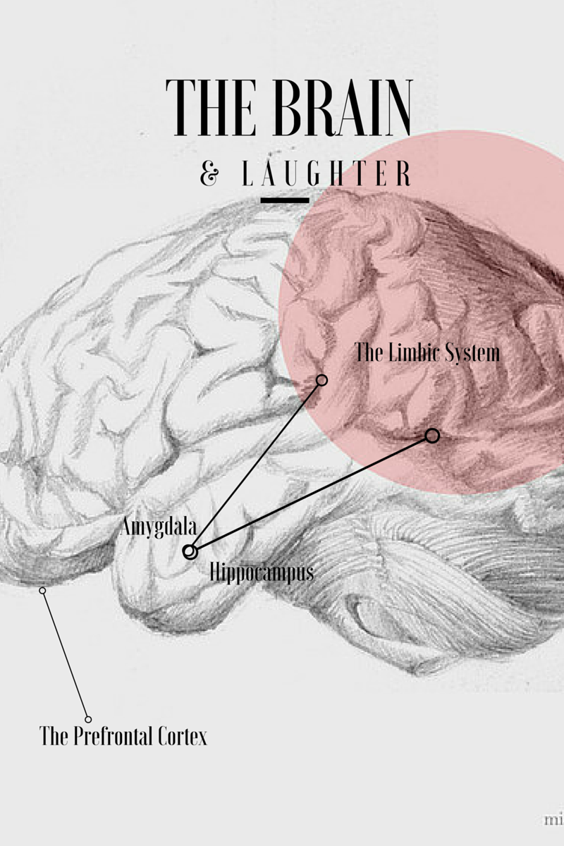Laughter Therapy: Why So Serious? - Jemully Media